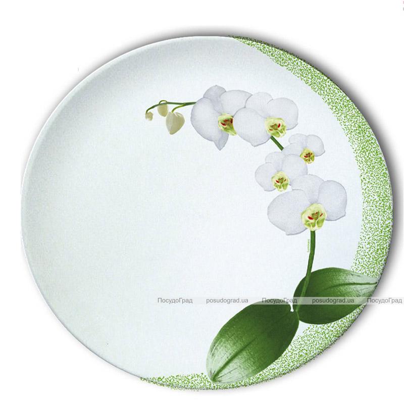 Столовый сервиз Luminarc White Orchid на 6 персон 19 предметов
