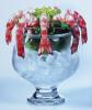Пиала Miscellaneous для салатов из морепродуктов, Икорница 200/550мл
