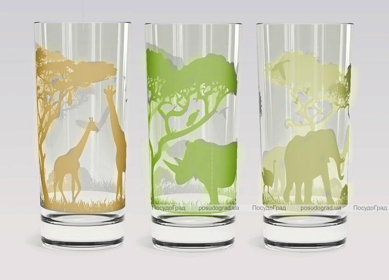 """Набор 3 стеклянных стакана """"Африка"""" 200мл"""