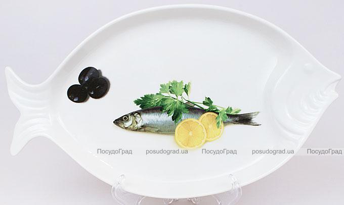 """Блюдо для рыбы Sea Food """"Оливки, лимон и зелень"""" 30х17см"""