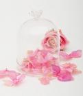 Бонбоньерка Luton стеклянная 11x15см