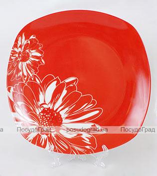 Фарфоровая тарелка Napoli-C12 обеденная Ø26см