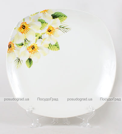 Фарфоровая тарелка Napoli-C34 обеденная Ø26см