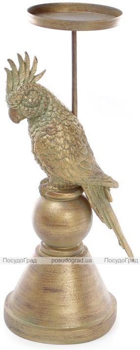"""Підсвічник декоративний """"Olamide"""" Папуга 14.6х14х36.8см"""