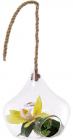 Ваза-підвіска Ancient Glass 18х18.5см, скляна на мотузці