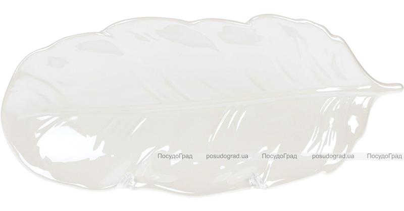 "Набор 6 блюд Goreidh ""Лист"" 26.5х8.5см, керамика, белый"