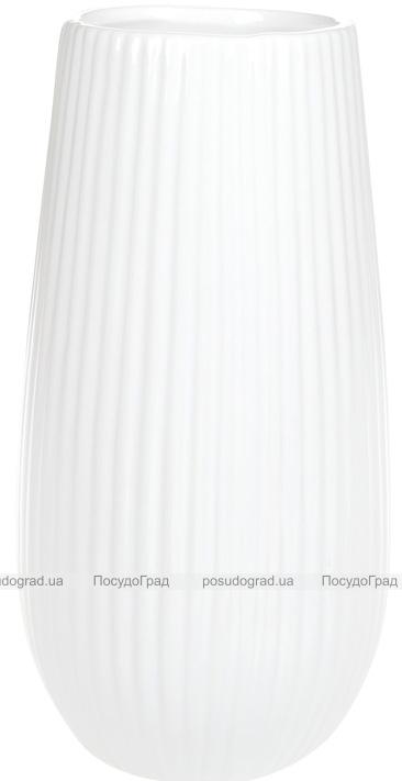 Ваза керамическая Jeffersonia Lanes 25см, белая