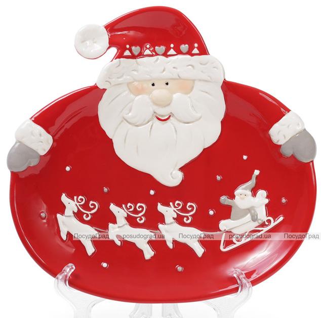 """Набор 2 обеденные керамические тарелки """"Санта"""" 24см"""