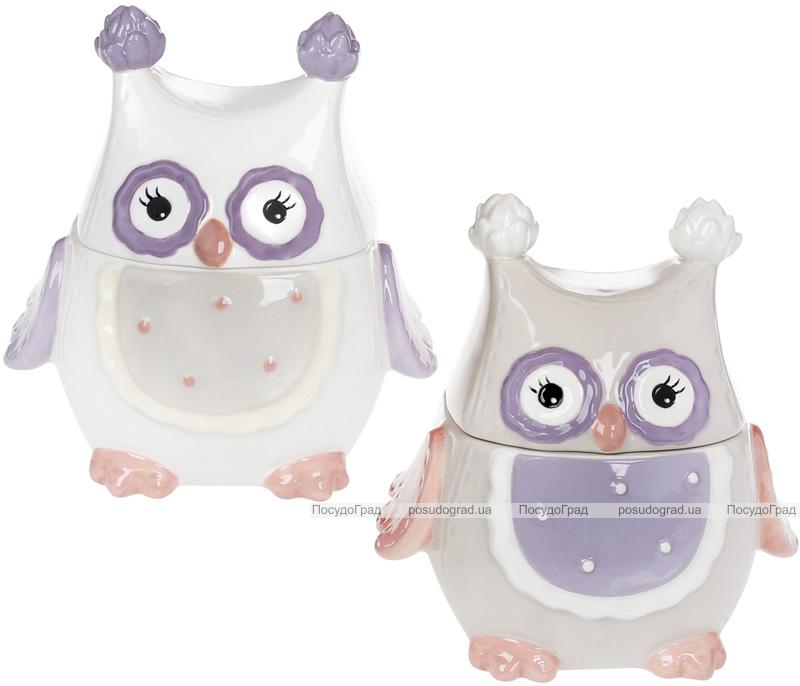 """Банка """"Owl Family"""" 250мл с керамической крышкой"""