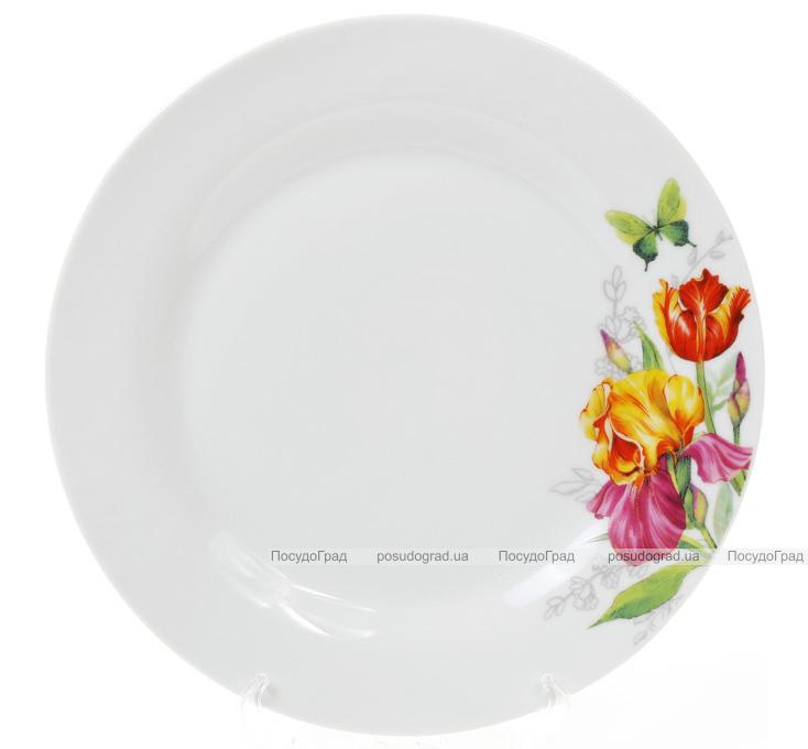 """Набір 6 порцелянових обідніх тарілок """"Вогненні іриси"""" Ø23см"""
