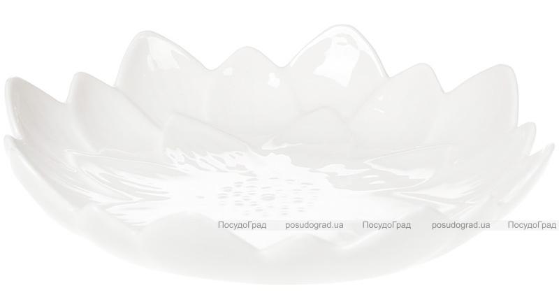 """Набор 6 фарфоровых блюд """"White City Астра"""" Ø20см, белый фарфор"""