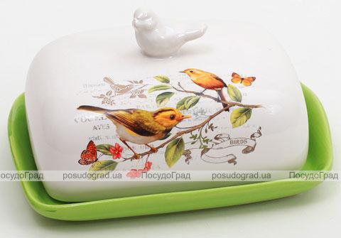 """Масленка """"Birds Garden"""""""