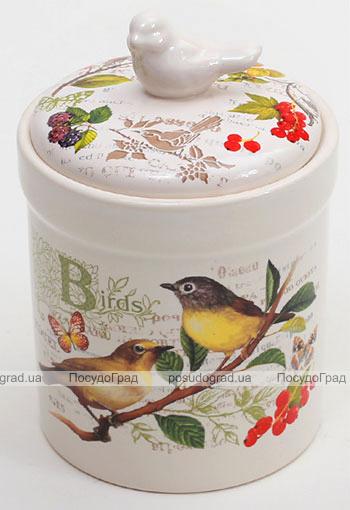 """Банка """"Birds Garden"""" 470мл с крышкой"""