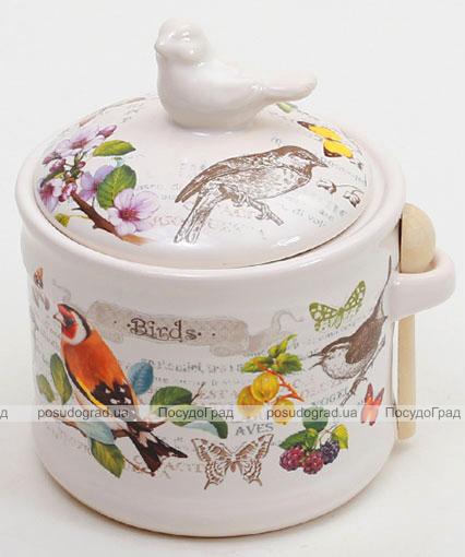 """Банка для сыпучих продуктов """"Birds Garden"""" 350мл с деревянной ложкой"""