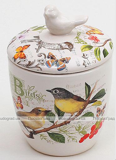 """Банка """"Birds Garden"""" 350мл с крышкой"""