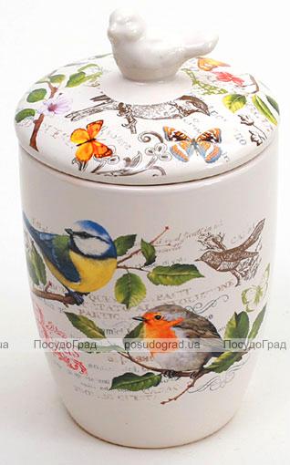 """Банка """"Birds Garden"""" 500мл с крышкой"""