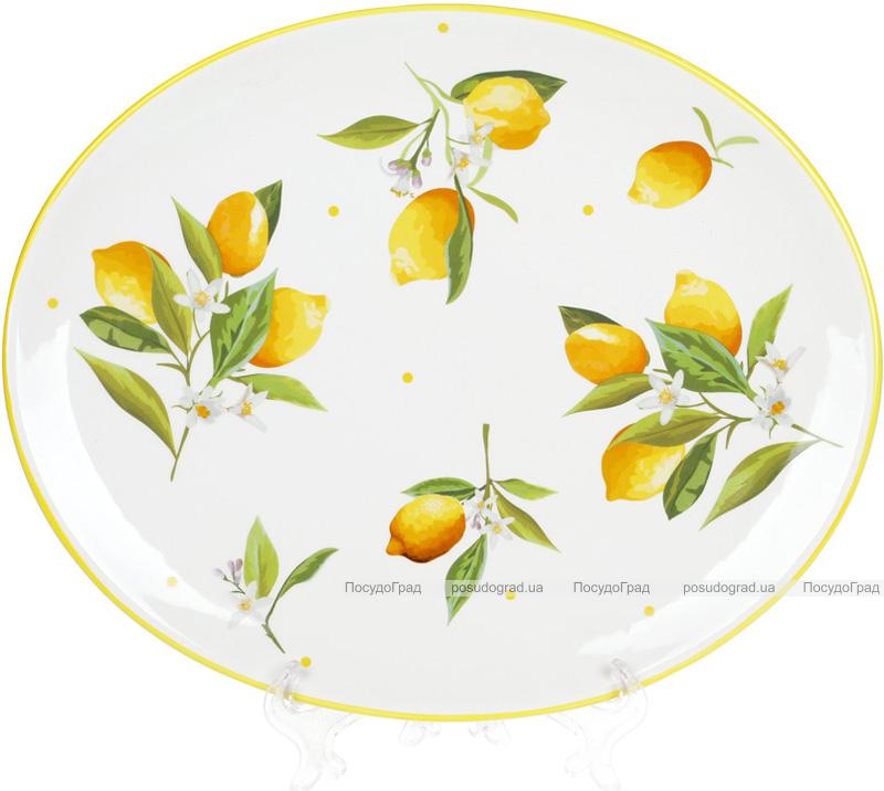 """Блюдо керамическое """"Цитрусовое наслаждение"""" овальное 30.5х25х2.5см"""