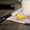 Нож овощной Fissman Hattori 10см hammered из нержавеющей стали