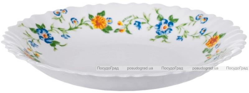 Набір 12 супових тарілок Arcopal Cybele Ø23см