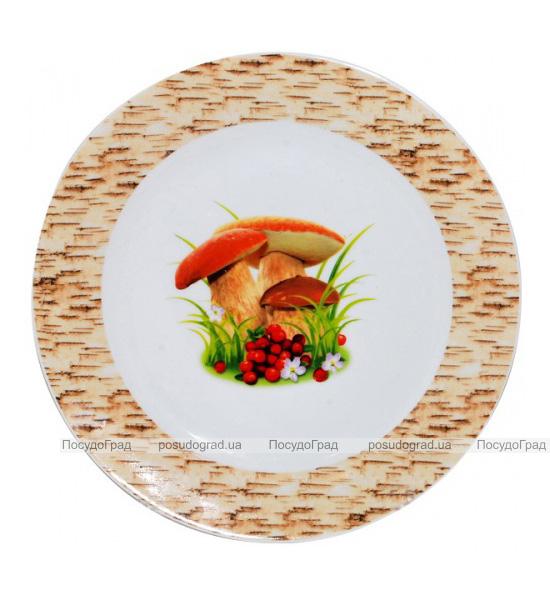 """Набор 6 мелких тарелок """"Грибочки"""" Ø20.5см"""