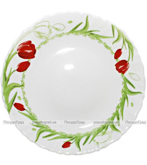 "Набор 6 обеденных тарелок ""Тюльпан"" Ø24см, стеклокерамика"