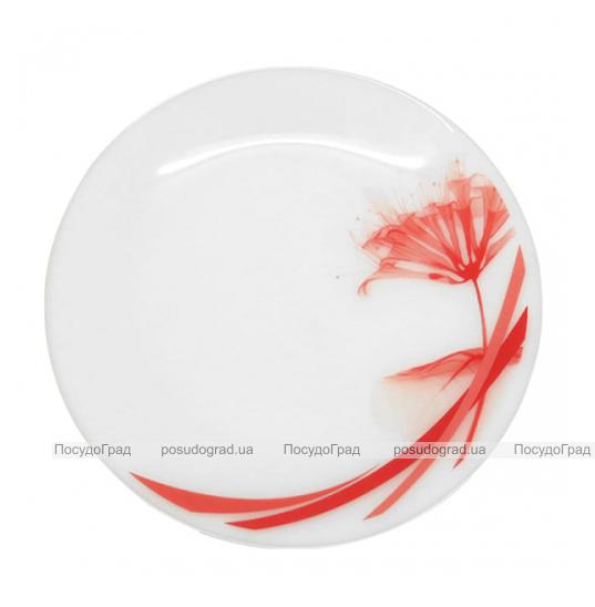 """Набор 6 десертных тарелок """"Фуксия"""" Ø18см, стеклокерамика"""