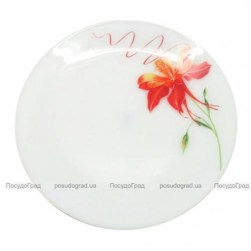 """Набор 6 мелких тарелок """"Тигровая Лилия"""" Ø20см, стеклокерамика"""