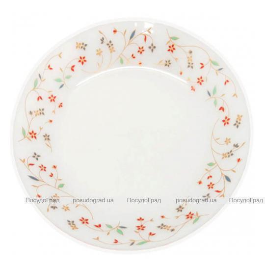 """Набор 6 мелких тарелок """"Маттиола"""" Ø20см, стеклокерамика"""