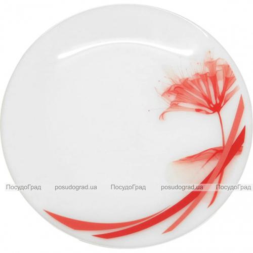 """Набор 6 подставных тарелок """"Фуксия"""" Ø23см, стеклокерамика"""