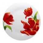 """Набор 6 мелких тарелок """"Красный тюльпан"""" Ø20.5см"""