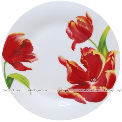 """Набор 6 мелких тарелок """"Красный тюльпан"""" Ø23см"""