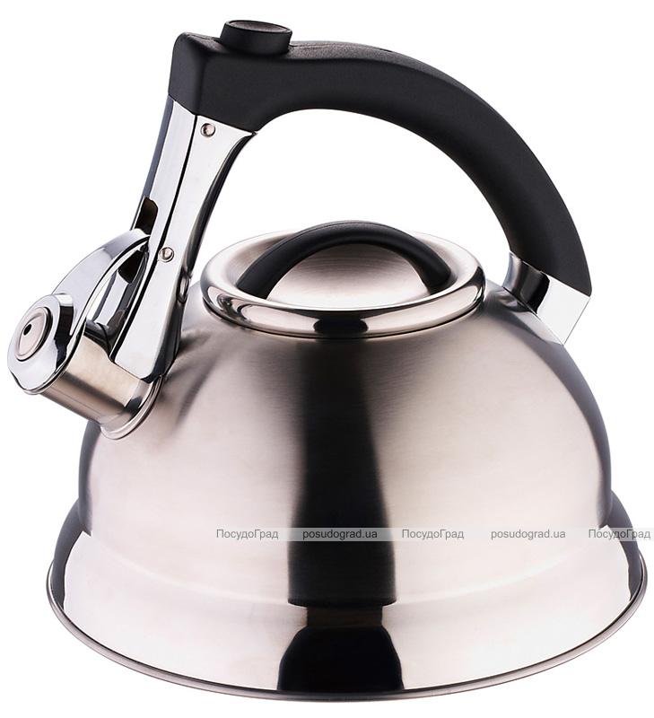 Чайник Wellberg Ergoria Silver на 2,7 литра