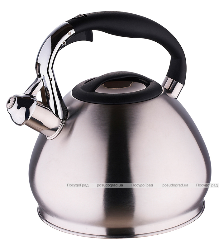 Чайник Wellberg Ergoria Silver на 3,4 литра