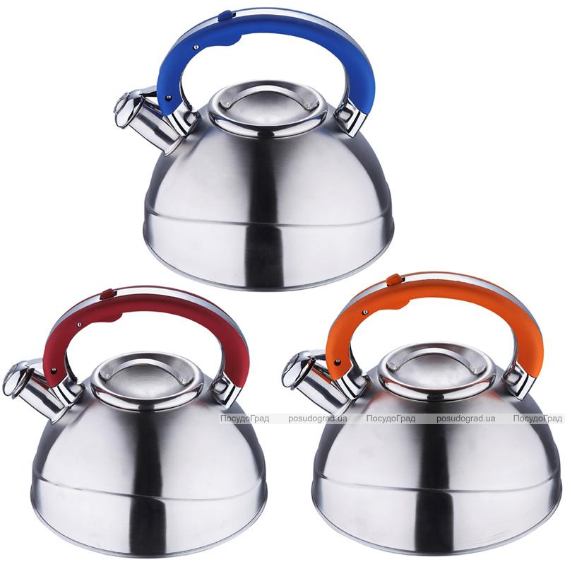 Чайник Wellberg Archimedes 3л со свистком, индукция