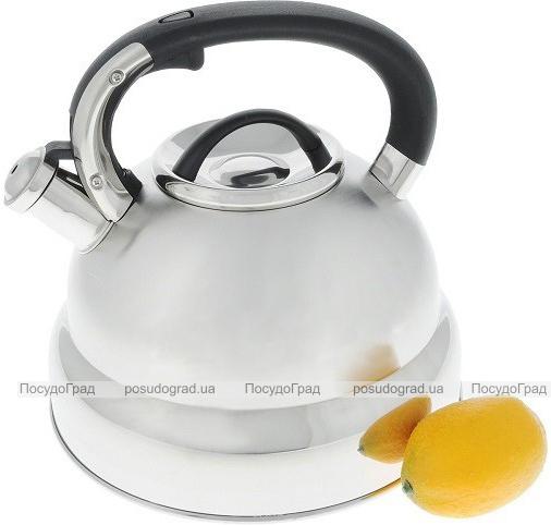 Чайник Wellberg Myriad 4.5л нержавіюча сталь зі свистком