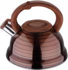 Чайник Wellberg Rankweil 2.5л, нержавіюча сталь